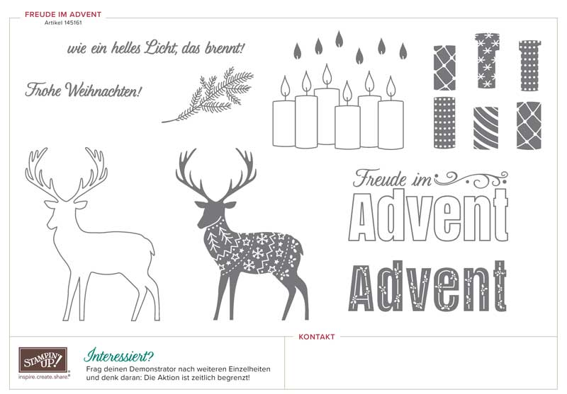 Exklusives Stempelset Freude im Advent - Stampin Up