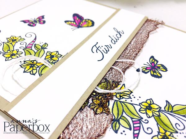 Schmetterlinge Voller Schönheit