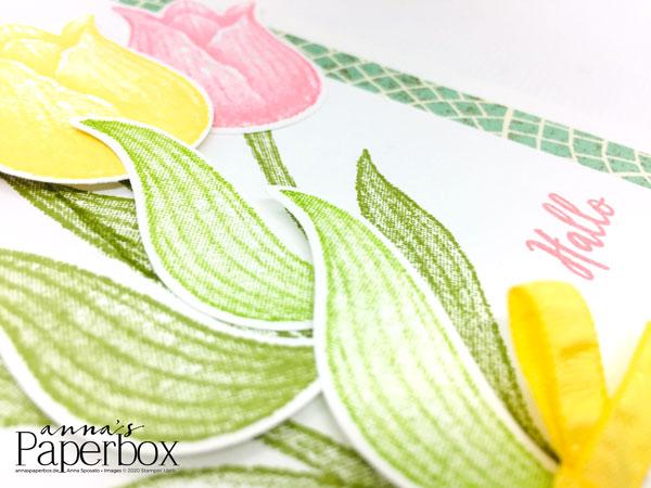 ein Tulpengruß auf Papier